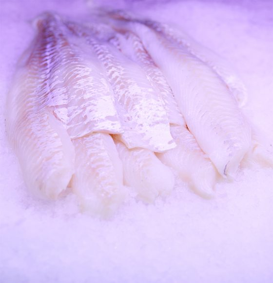 fresh sea bass fillets on ice in the seafood section