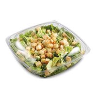 Caesar Salad Product Shot